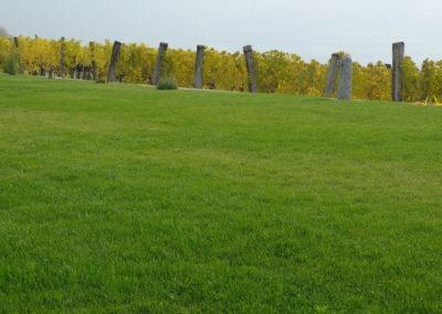 Donauland Rasenerde